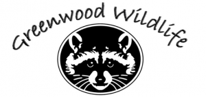 Greenwood Wildlife